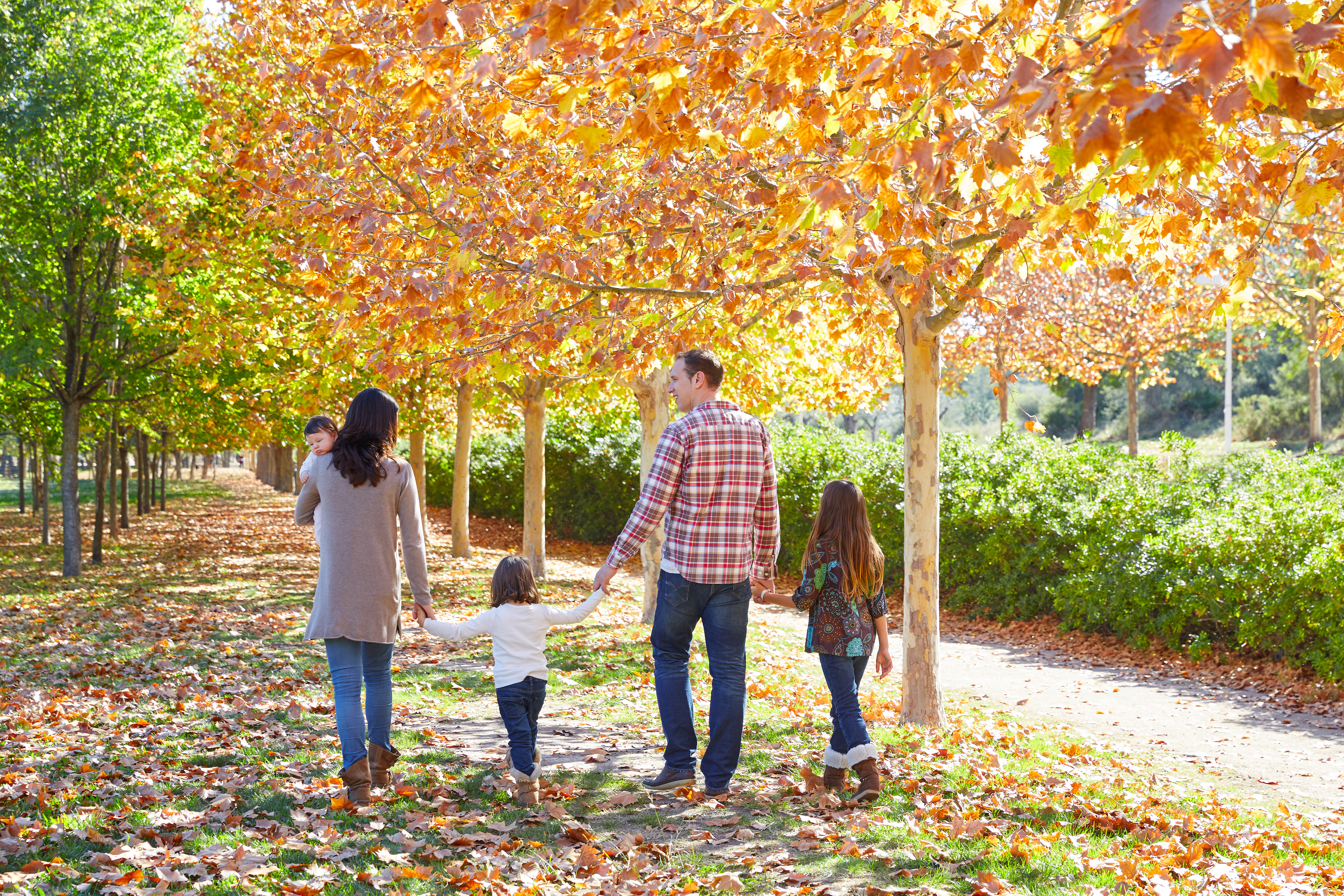 A family with small children walks down a sunny,  grassy path surrounded by fall leaves and trees that are changing color.